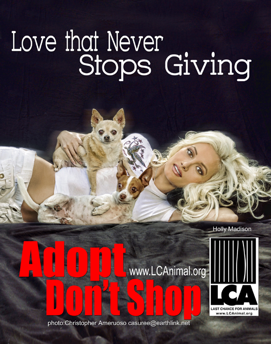 "Holly Madison ""Adopt Don't Shop PSA for Last Chance For Animals"