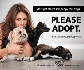 Jillian Michaels Humane Society Please Adopt